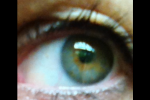 Auge Brigitte